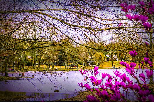 Almost Spring - Landscape by Barry Jones