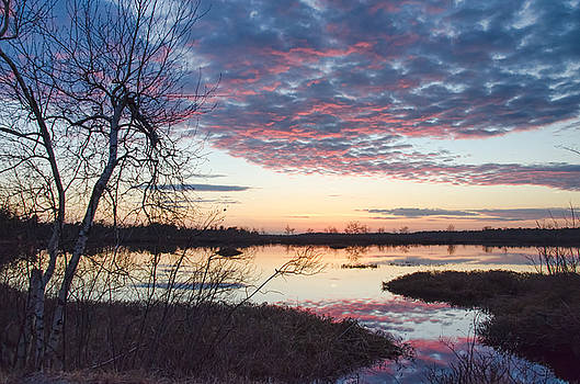 Almost Spring Sunset by Beth Sawickie