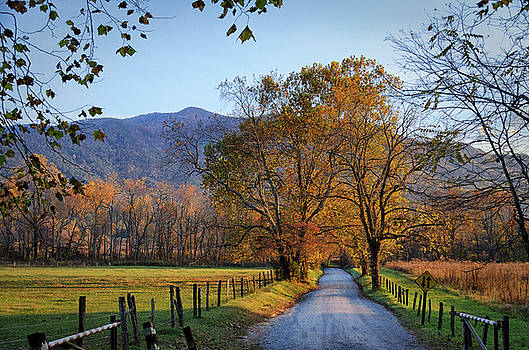 Almost Sunset at Sparks Lane by Kristina Plaas