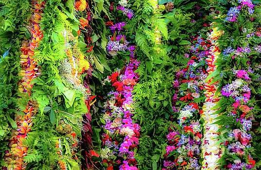 Aloha Hawaii Flower Lei's by D Davila