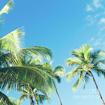 Aloha Hawaii Lahaina Palms by Sharon Mau
