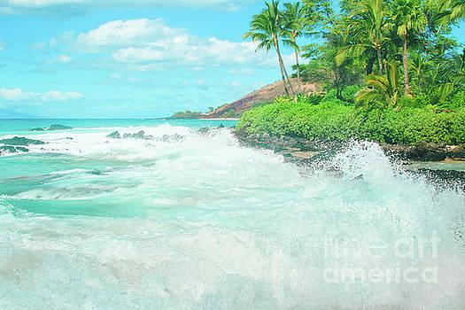 Aloha mai e Paako Beach Makena Maui Hawaii  by Sharon Mau