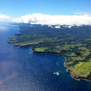 Aloha Maui  by Nicole Alvarez