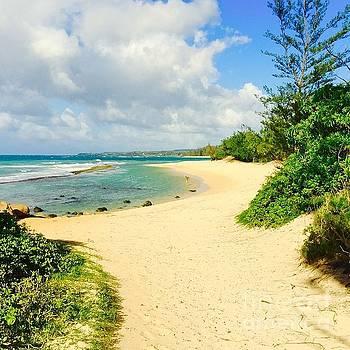Baby Beach by Sharon Mau