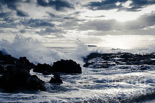 Aloha Paako Beach Beauty by Sharon Mau