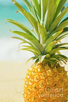 Aloha Pineapple Beach Kanaha Maui Hawaii by Sharon Mau