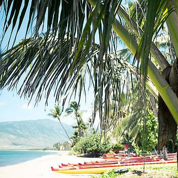 Aloha Sugar Beach by Sharon Mau