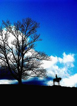 Alone On The Hill by Angela Davies