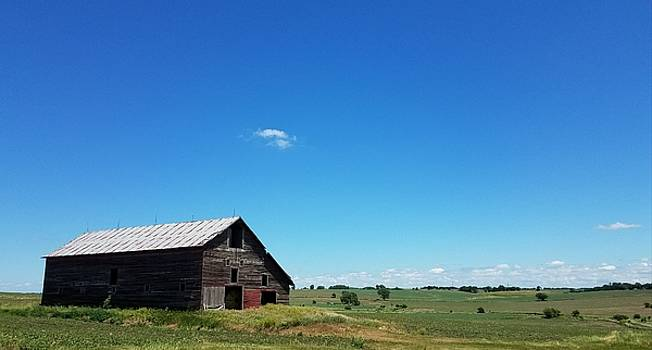 Alone On The Prairie by Caryl J Bohn