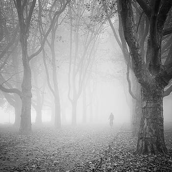 Alone by Piotr Belcyr