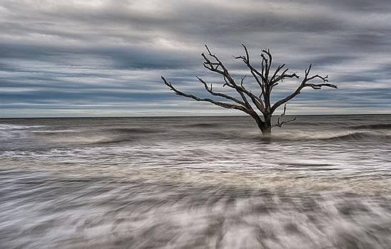 Alone by Reid Northrup