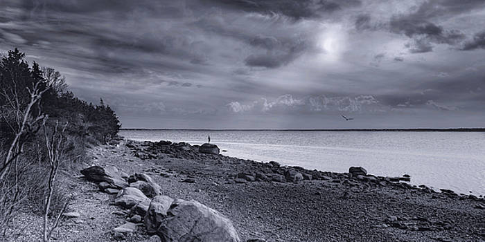 Alone With the Sea by Robin-Lee Vieira