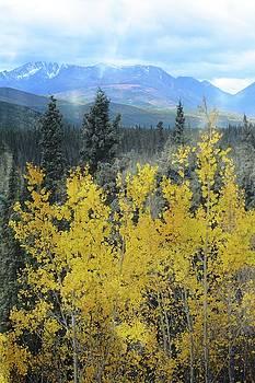 Marty Koch - Along the Alaskan Highway