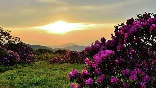 Along The Blue Ridge by Jamie Pattison