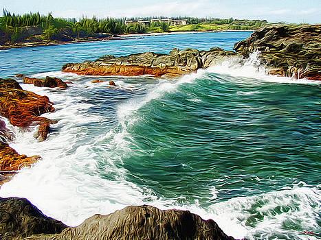 Glenn McCarthy - Along The Coast Of Maui - Hawaii
