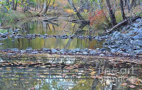 Maria Urso - Along the Creek at Sundown