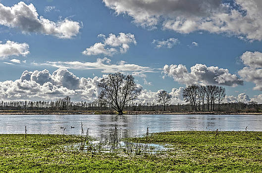 Along the IJssel river near Deventer by Frans Blok