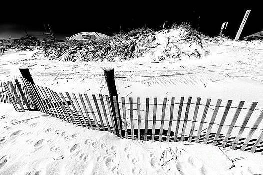 John Rizzuto - Along the Long Beach Island Dune Fence
