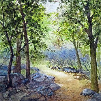 Along the Path by Bonnie Rinier