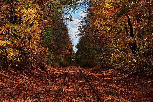 Along The Rails by Tricia Marchlik