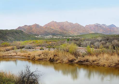 Along the Verde River by Gordon Beck