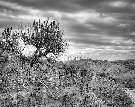 Nikolyn McDonald - Along the Wash - Toadstool Geologic Park - Nebraska