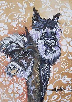 Alpaca Do-Bee  Brothers by Patty Sjolin