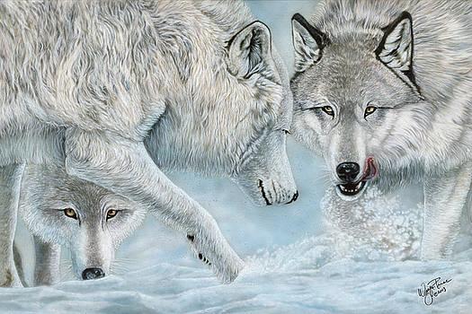 Alpha Challenge by Wayne Pruse