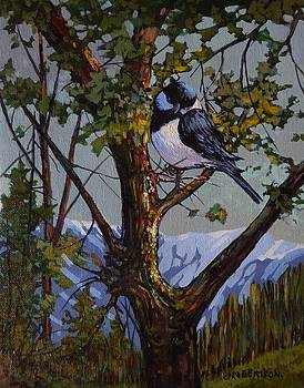 Alpine Chickadee by Catherine Robertson