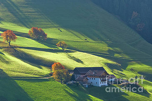 Alpine farm and meadows in autumn by Damian Davies