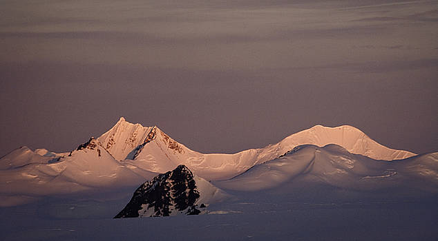 Alpine glow - Antarctica by Ralph Fahringer