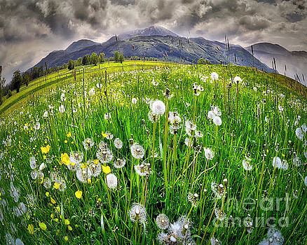 Alpine Landscape by Edmund Nagele