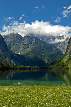 Alpine Meadow by Frank Tschakert