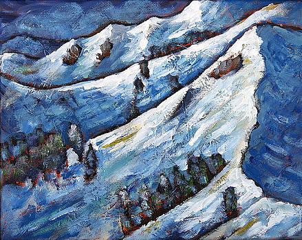 Alpine Meadows 1 by Sara Zimmerman