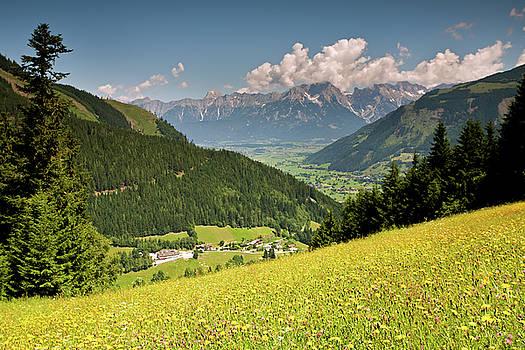 Aivar Mikko - Alpine Meadows with Wildflowers