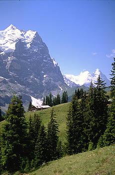 Flavia Westerwelle - Alps