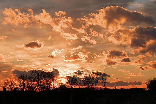 Alrich Sunset by Troy  Skebo
