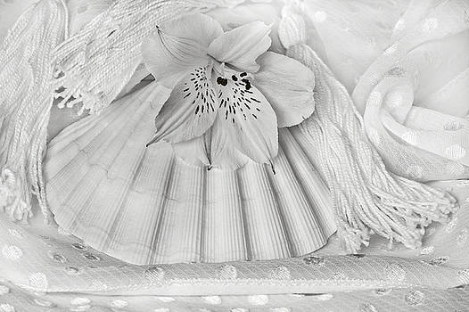 Sandra Foster - Alstromeria, Shell And Tassels