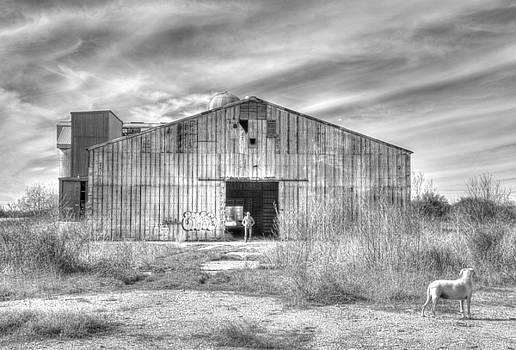 Bonnie Davidson - Altair Warehouse