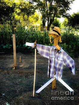 Alternative Scarecrow  by Jen Lynn Arnold
