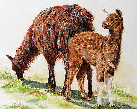 Altiplano natives by Monica Carrell