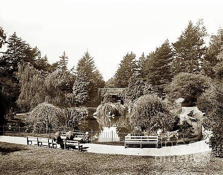 California Views Mr Pat Hathaway Archives - Alvord Lake Bridge Golden Gate Park circa 1901