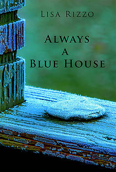 Don Mitchell - Always A Blue House book cover