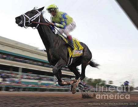 Always Dreaming, 2017, One million dollar Florida Derby by Thomas Pollart