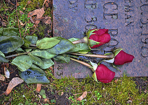 Always in my Heart by Kelly E Schultz