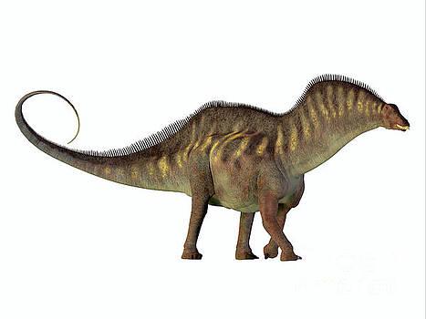 Amargasaurus Side Profile by Corey Ford