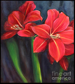 Amaryllis  by Edward Williams