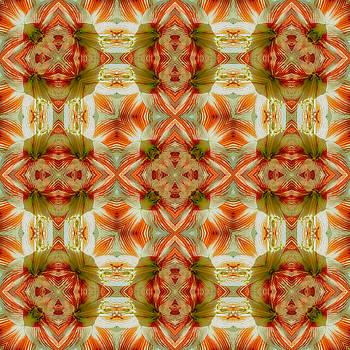 Amaryllis Mandala by Julian Venter