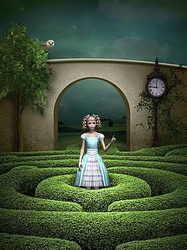 Amazing Maze by Britta Glodde