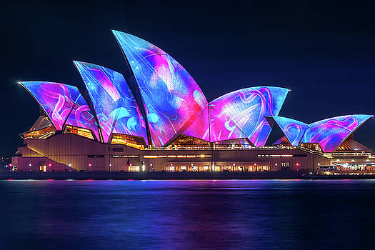 Amazing new Designs on the Opera House at Vivid Sydney by Daniela Constantinescu